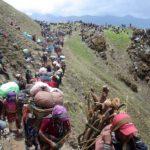 Gorilla Trekking in Nepal